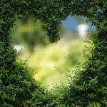 Alkmaar in top 3 duurzaamste gemeentes van Nederland