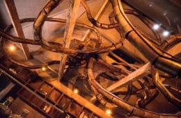 de-kamer-octopus