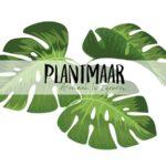 Groene markt Plantmaar