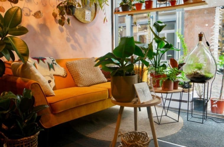 Bloosom - het leukste groene winkeltje
