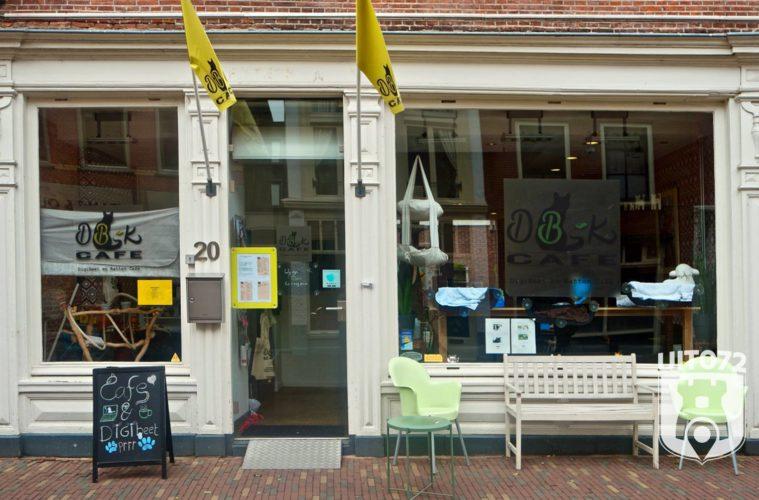 uit072 prachtstraatjes alkmaar kattencafe